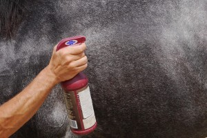 sprayzoom